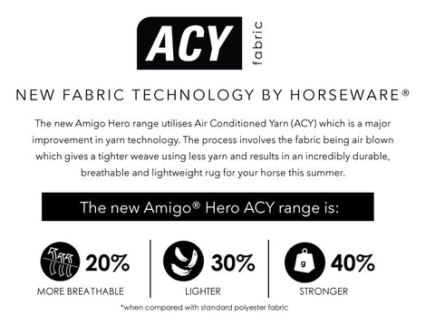 amigo hero acy facts
