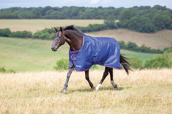 Shires Tempest 100g Turnout Rug