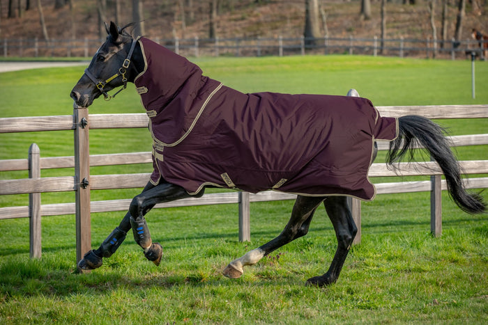 Amigo Hero Ripstop Plus Lightweight rug 0G