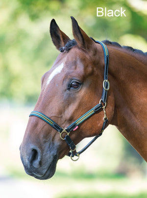 Bridleway Cowdray Leather Head Collar