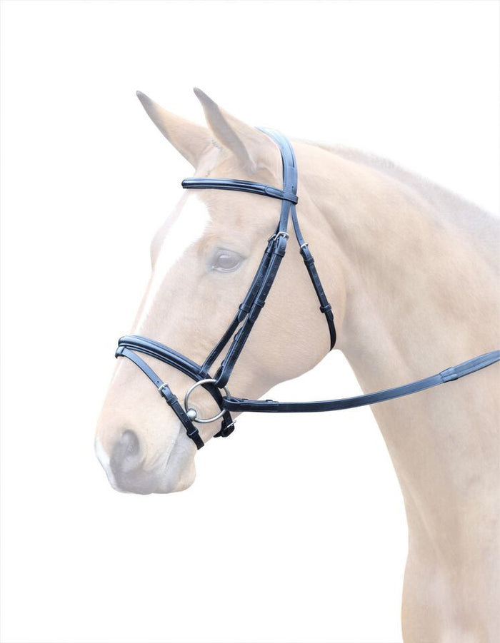 Bridleway Lavello Leather Flash Bridle