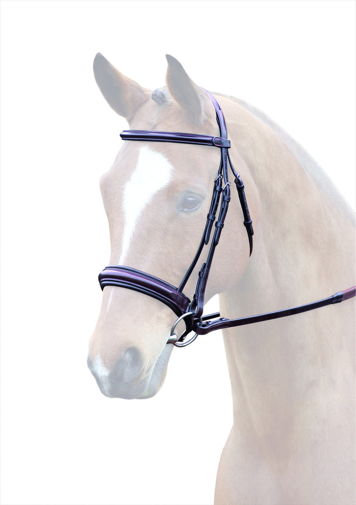 Bridleway Lavello Leather Padded Cavesson Bridle