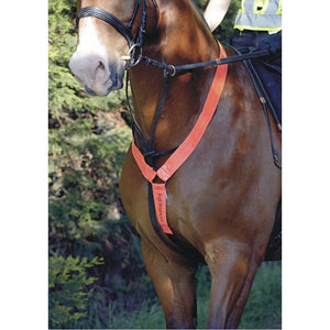 Equisafety Reflective Neck Band