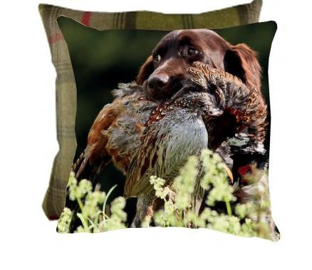 Country Cushions