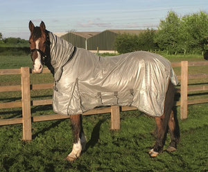 The Andromeda Legacy  Fly Rug