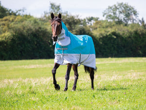 Shires Tempest Waterproof Fly Combo Rug
