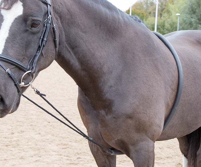 Shires Soft Lunging Aid