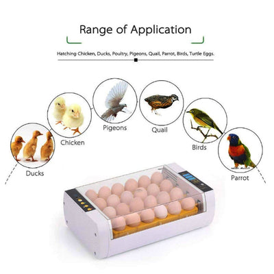 Fully Automatic 24 Eggs Incubator Farm Chicken Poultry Egg Hatcher Hatching LED Display Chocadeira