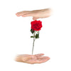 Floating Rose Flower Fire Stage Magic Tricks Magician Prop Close Up Magic - Mirage Novelty World