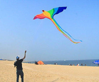 74 inches Colorful Bird Kite Easy Control With Handle Line  kites for kids Sale  String Outdoor Toys - Mirage Novelty World