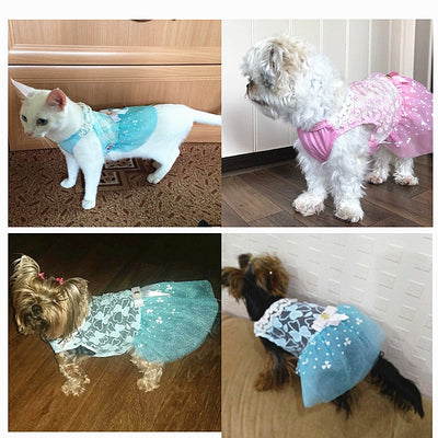 Lovely Cat Lace Dress for Cat Clothes
