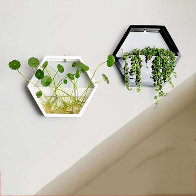 Acrylic Wall Vase for Home Decoration
