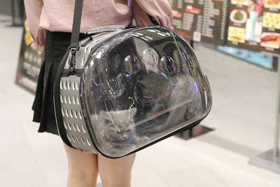 Cat Carrier Bag with Package Transparent Breathable Box