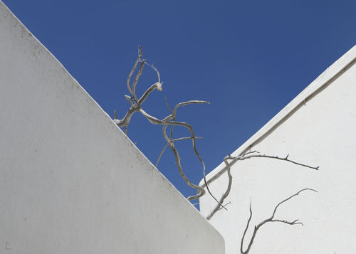 Human geometry. Rebellious nature. Amorgos. Greece.