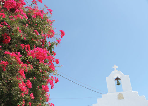 Colours. Aromas. Amorgos. Greece.