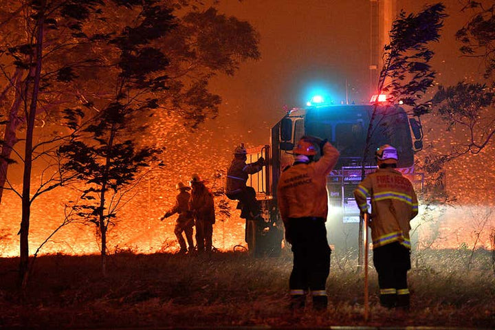 Australian Fires have Killed over a Billion Animals, Hundreds of Billions of Insects and Pushed 100 Endangered Species to the Brink of Extinction