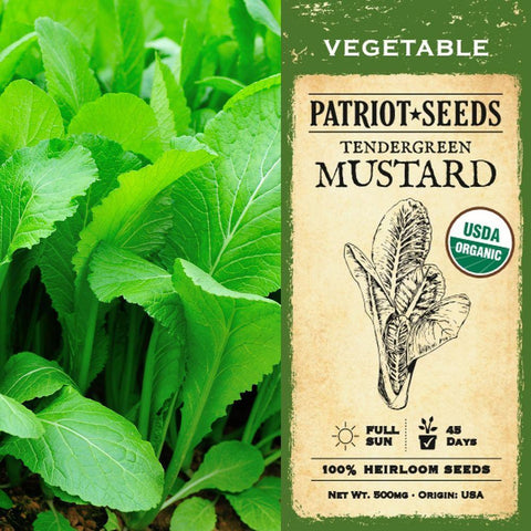 Organic Tendergreen Mustard Seeds (500mg) - My Patriot Supply