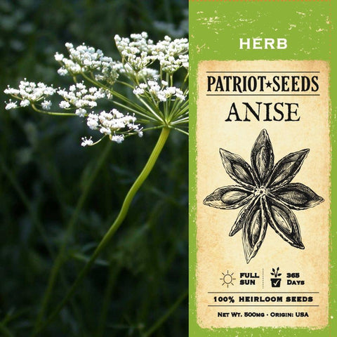 Anise Herb Seeds (500mg) - My Patriot Supply