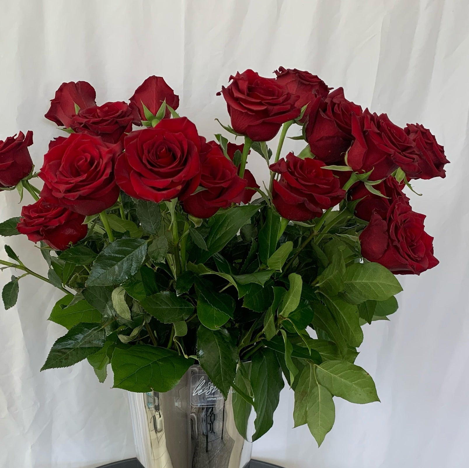 Red France Roses