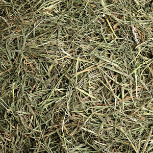 "3rd Cutting ""Super Soft"" Timothy Hay, Small Animal Food:Smallpetselect"