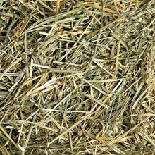 Oat Hay, Small Animal Food:Smallpetselect