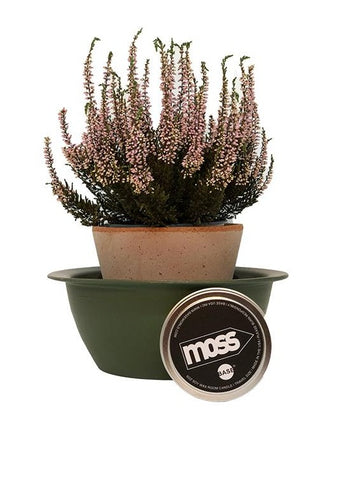 MOSS  6oz Room Candle
