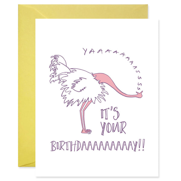 Yas Ostrich Birthday
