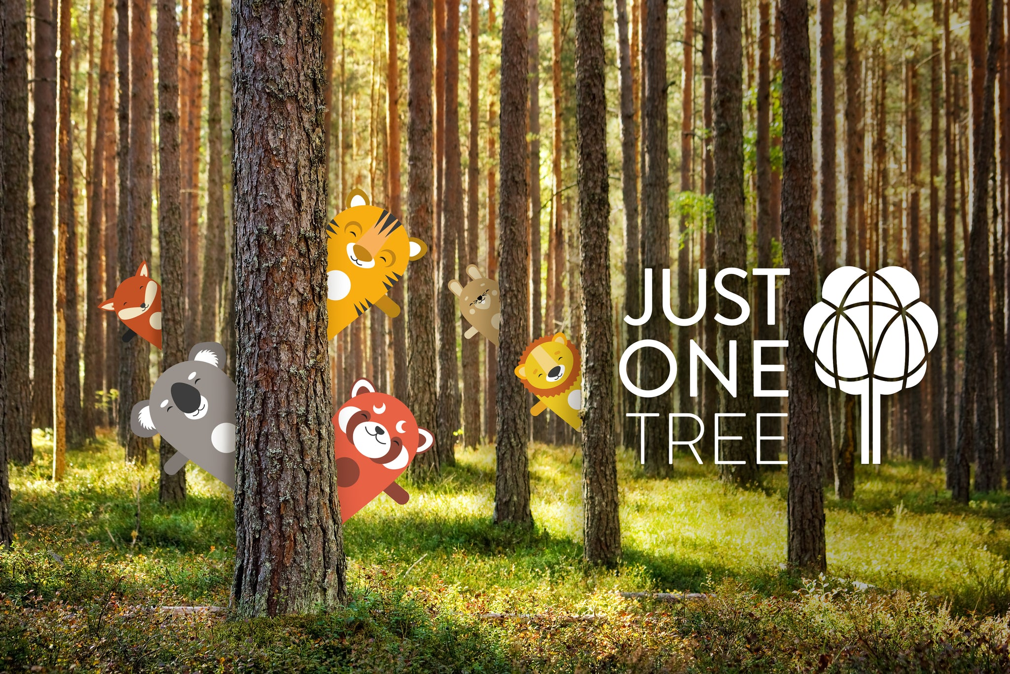 OddlyWild in partnership with Just One Tree campaign