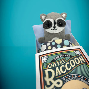 Mini Felt Raccoon in a card box - Stuffed toy