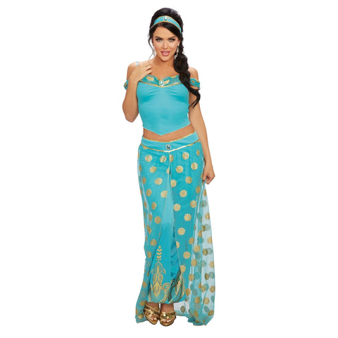 Arabian Princess Women's Costume