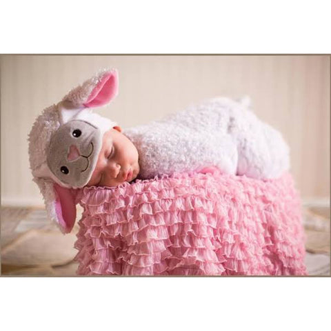 Ryan the Lamb Bunting Infant Costume