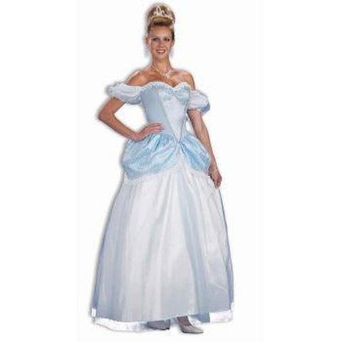 Storybook Princess Women's Costume