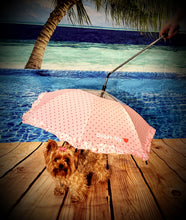 Load image into Gallery viewer, The Princess Doggy Umbrella/Leash