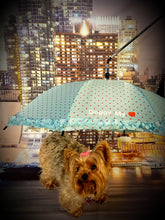 Load image into Gallery viewer, The Empress Doggy Umbrella/Leash