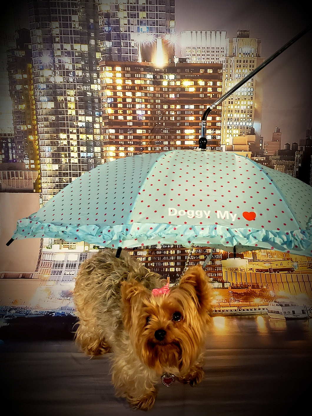 The Empress Doggy Umbrella/Leash