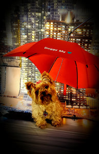 The Sunset Doggy Umbrella/Leash
