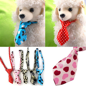 Color Dog Puppy Bow Tie Necktie