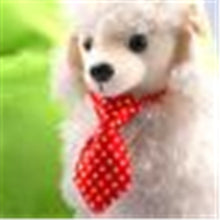 Load image into Gallery viewer, Color Dog Puppy Bow Tie Necktie