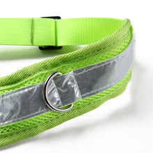 Load image into Gallery viewer, Hands Free Pet Dog Cat Running Jogging Padded Waist Belt Reflective Strip Elastic Leash Perfect Walking Training Dog Leash Set