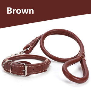 Dog collar and leash set for small medium and large dogs