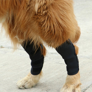 1 Set Dog Leg Knee Brace Straps Protection for Dogs Joint Wrap Doggy Medical Supplies