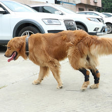 Load image into Gallery viewer, 1 Set Dog Leg Knee Brace Straps Protection for Dogs Joint Wrap Doggy Medical Supplies