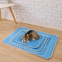 Load image into Gallery viewer, Summer Cooling Mat Ice Blanket for your Doggy.
