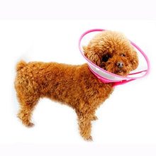 Load image into Gallery viewer, Dog  Wound Recovery, Cover Pet Anti-Bite Lick, Scratch Medical Cone Collar