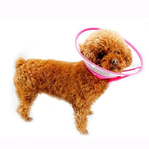Dog  Wound Recovery, Cover Pet Anti-Bite Lick, Scratch Medical Cone Collar