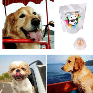 Long Effect Edible Dog Vitamin-Ball,  Snack Licking Solid Nutrition Energy Ball with Protective Cover Health Care for your  Doggy