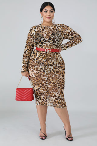 Fever Set | PLUS SIZE