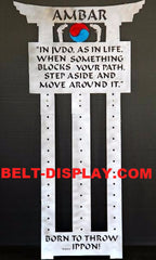 Judo Belt Display: Martial Arts 12 Belt Holder