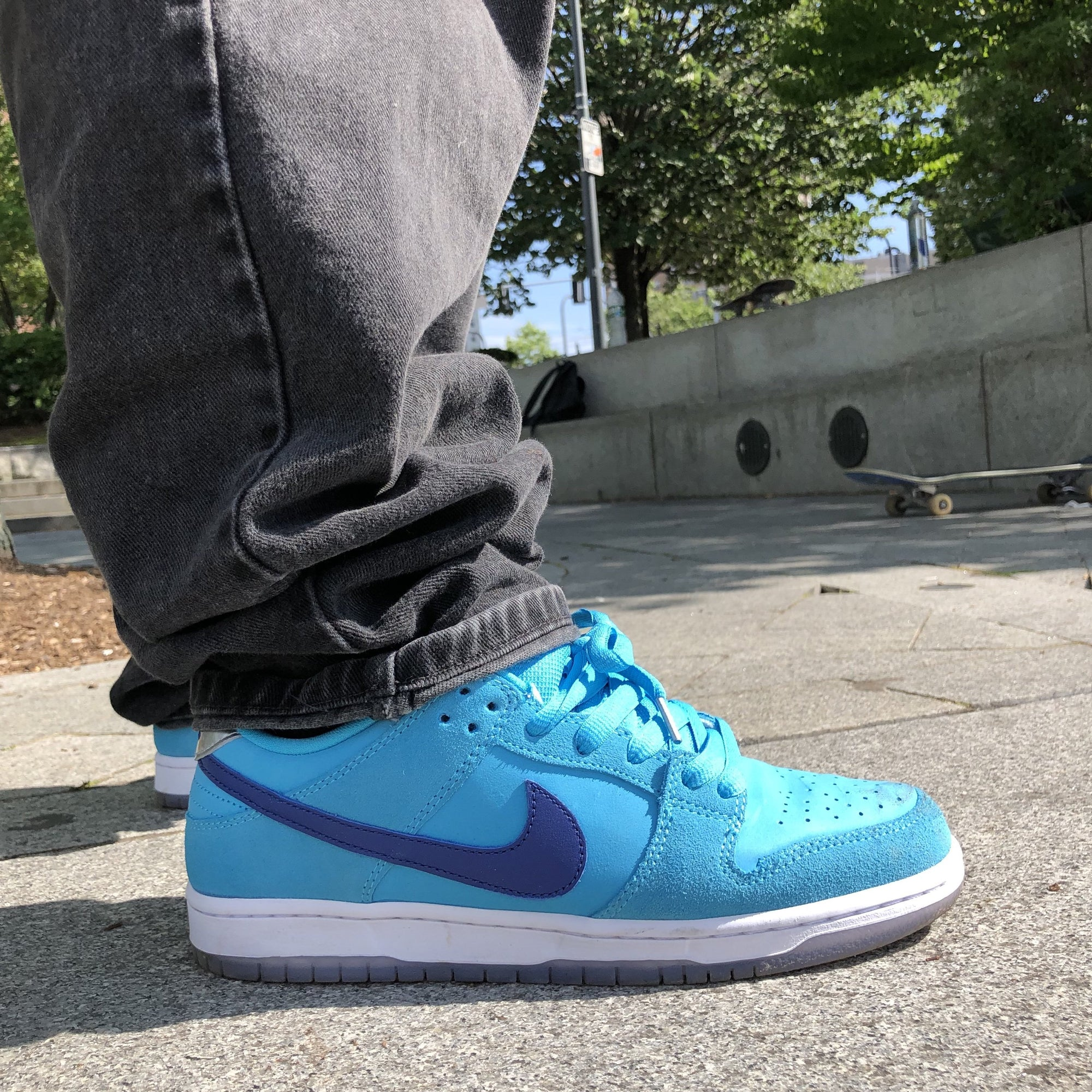 Nike SB Blue Fury Dunk Low Raffle