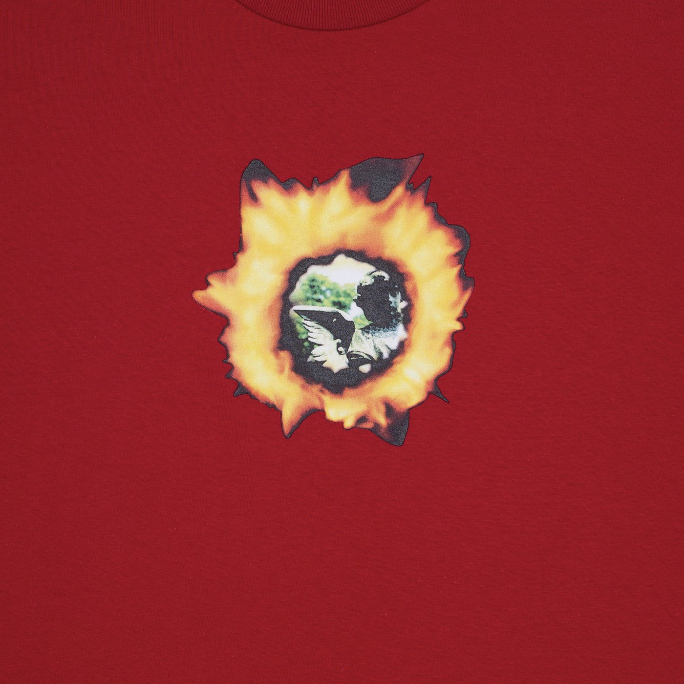 Fucking Awesome Angel Burn Tee Red